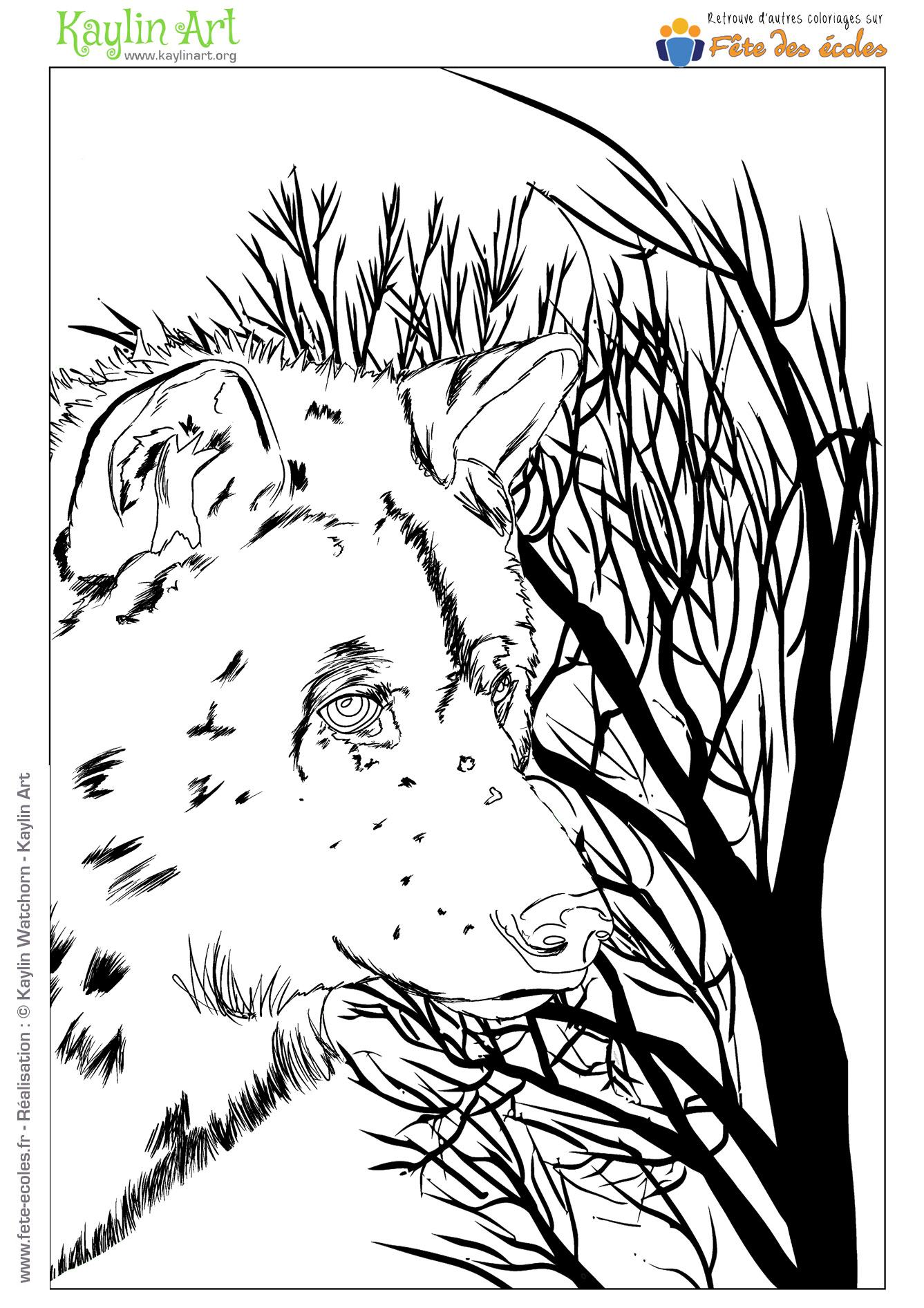Coloriage Loup Dans La Foret.Coloriage D Un Loup Dans La Foret