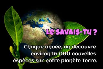 LE SAVAIS-TU ? : 16000 espèces nouvelles chaque année