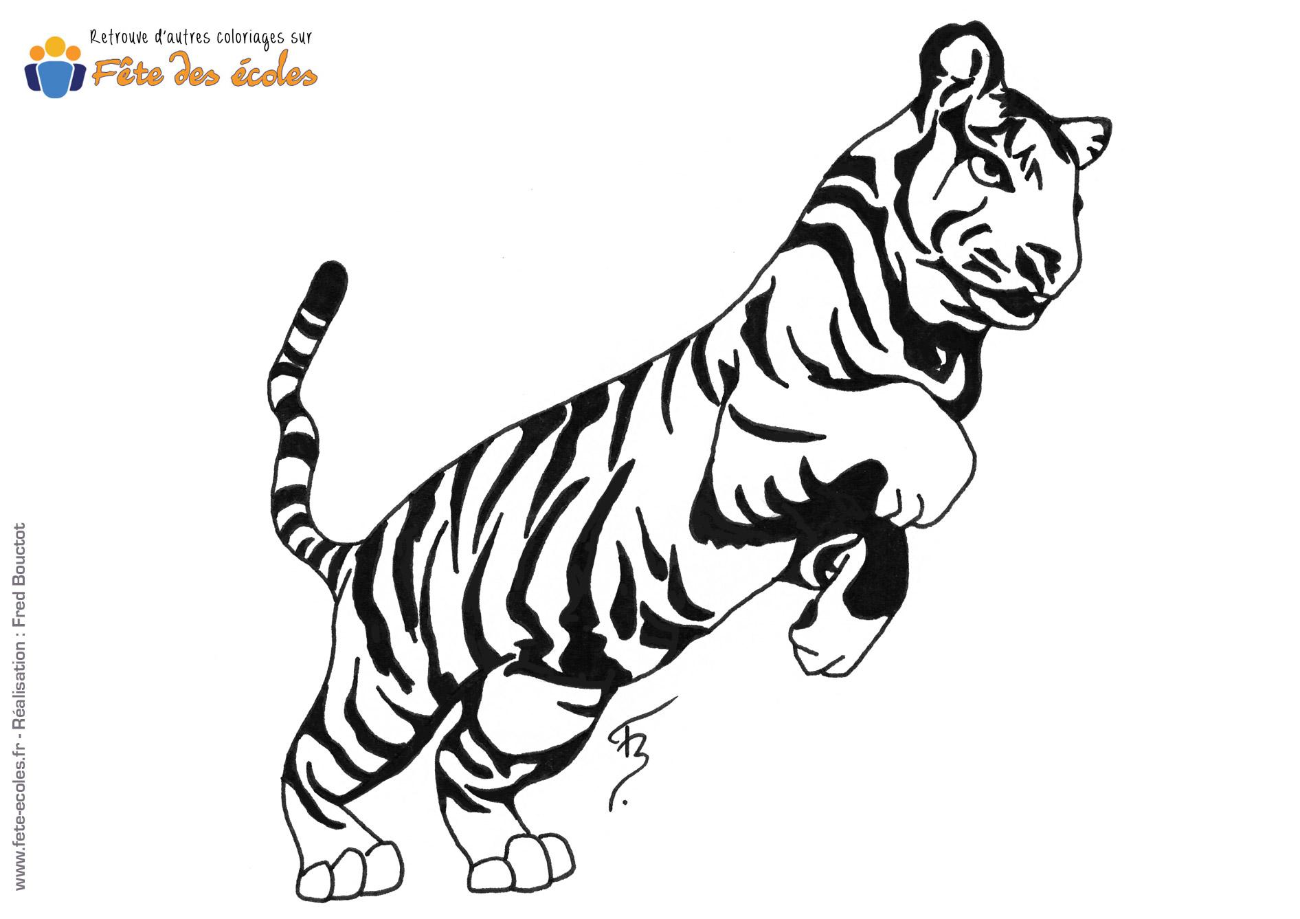 Coloriage d'un tigre qui saute